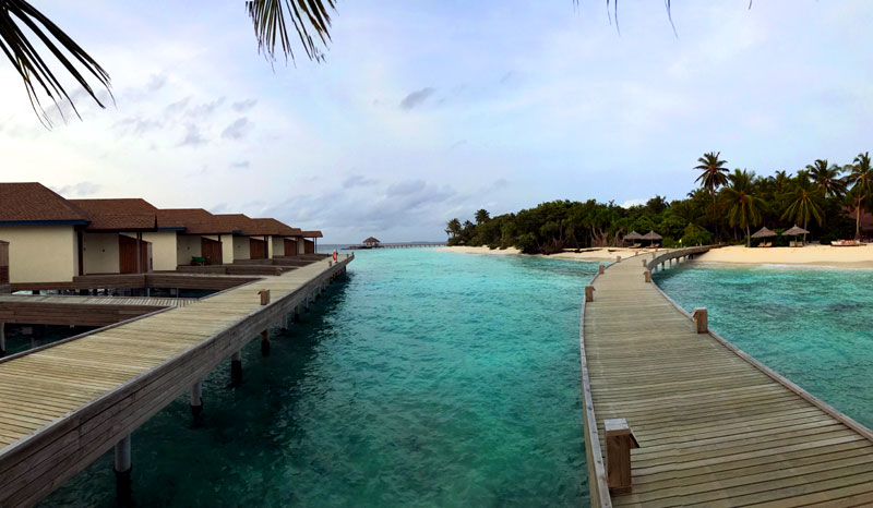 Reethi Faru Resort Review Jammy Journey