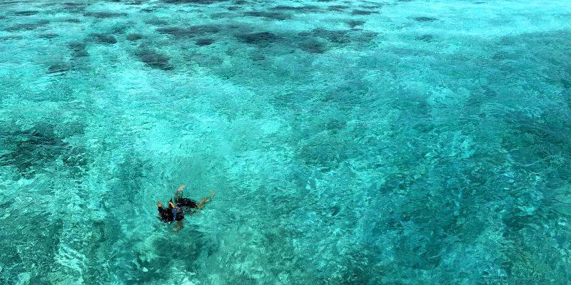 Why we love snorkeling